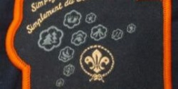 What's with all the 2011 World Scout Jamboree border colors?